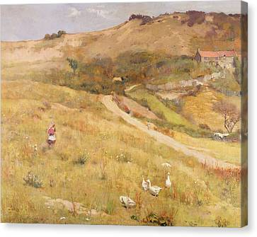 In Summertime  Canvas Print by Frederick William Jackson