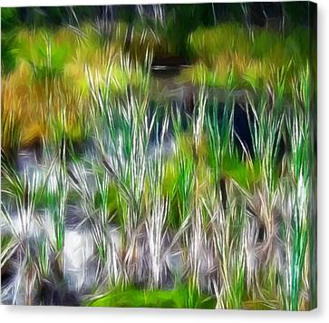 In The Bog Canvas Print by Steve K