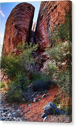 In The Canyon Canvas Print by Rick Berk
