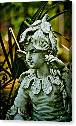 In The Garden Canvas Print by Christopher Holmes