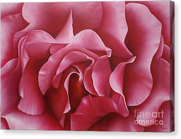 In The Heart Of A Rose Canvas Print by Paula Ludovino