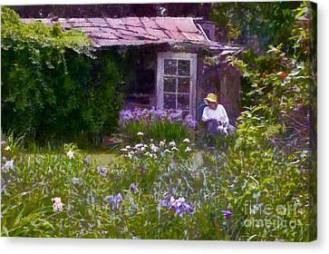 In The Iris Garden Canvas Print by Susan Isakson