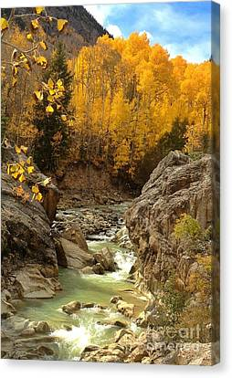 In The Rockies Canvas Print by Phil Huettner