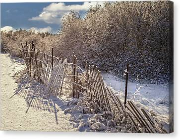 Canvas Print featuring the photograph In Winter's Chill by Yelena Rozov