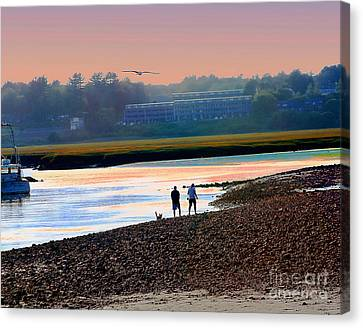 Incoming Gull From Dog Beach Series Canvas Print