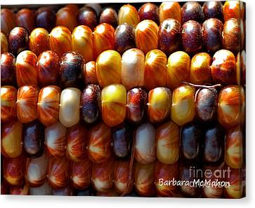 Canvas Print featuring the photograph Indian Corn by Barbara McMahon