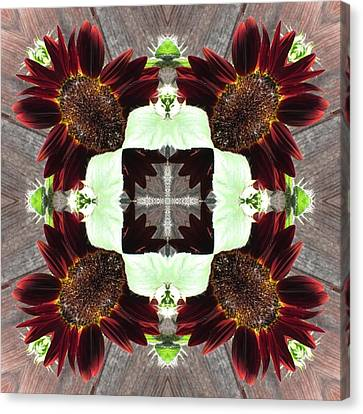 Indian Red Sunflowers Canvas Print by Trina Stephenson