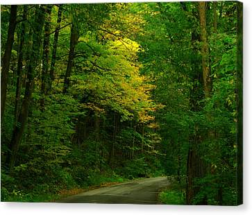Indiana Road Canvas Print by Joyce Kimble Smith