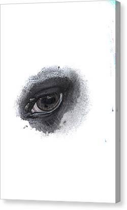 Indys Eye Canvas Print
