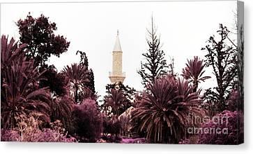 Larnaca Canvas Print - infrared Hala Sultan Tekke by Stelios Kleanthous