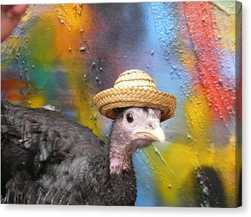 Canvas Print featuring the painting Ingrit The Turkey by Bogdan Floridana Oana