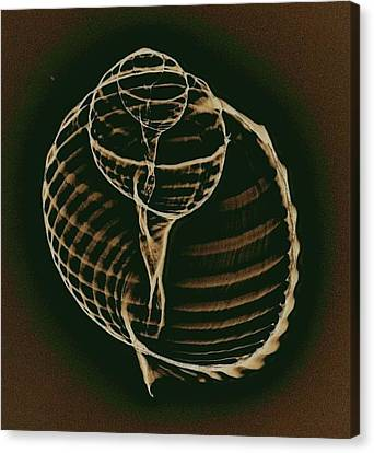 Inner Worlds Canvas Print by Sara Koenig King