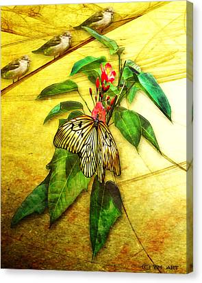 Insect - Butterfly - Sparrow - Happy Summer  Canvas Print by Yvon van der Wijk