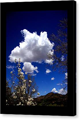 Canvas Print featuring the photograph Inside The Mind Of Spring by Susanne Still