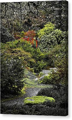 Canvas Print featuring the photograph Intimate Garden by Ken Stanback