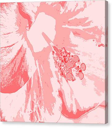 Intimate Pink  Canvas Print by Keren Shiker