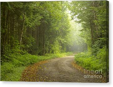 Into The Beyond Canvas Print by Idaho Scenic Images Linda Lantzy