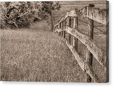 Into The Distance Bw Canvas Print by JC Findley