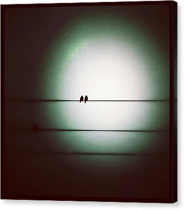 Into The Light - Instagram Photo Canvas Print