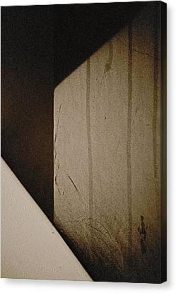 Into The Maze Canvas Print by Odd Jeppesen