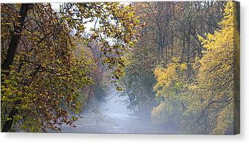 Into The Mist Canvas Print by Bill Cannon