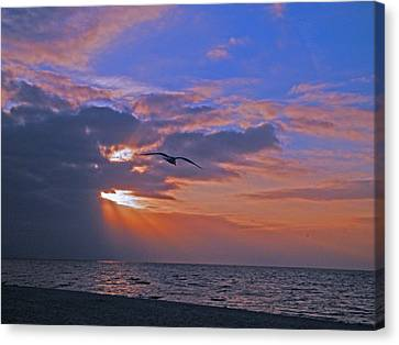 Canvas Print featuring the photograph Into The Misty Morning Sun by Brian Wright