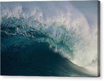 Intricacy In A Wave's Lip Canvas Print
