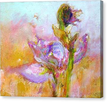 Iris 25 Morning Canvas Print by Petro Bevza