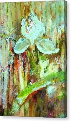 Iris 27 Blue Canvas Print by Petro Bevza