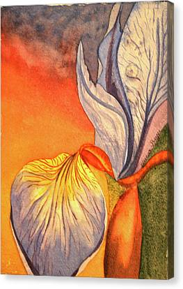 Canvas Print featuring the painting Iris Moody by Teresa Beyer