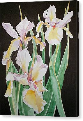 Canvas Print featuring the painting Iris  by Richard Willows