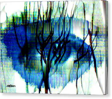 Iris Canvas Print by Seth Weaver