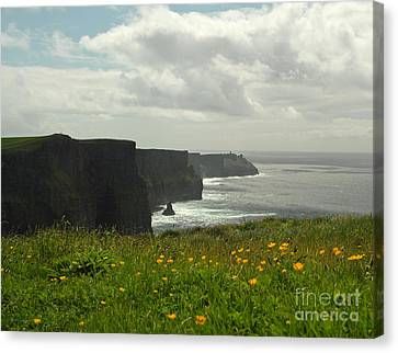 Irish Coast Cliffs Of Moher In Spring Ireland Canvas Print