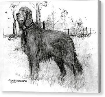 Canvas Print featuring the drawing Irish Setter by Jim Hubbard