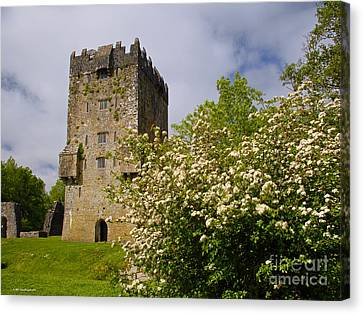 Irish Travel Landscape Aughnanure Castle Ireland Canvas Print