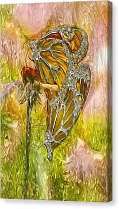 Iron Butterflys Canvas Print by Jack Zulli