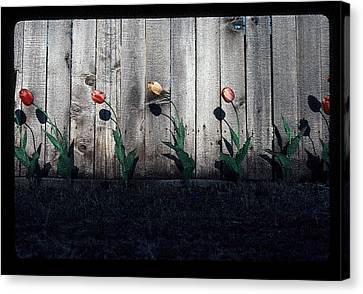 Is It Spring Yet? Canvas Print by Greg Kopriva