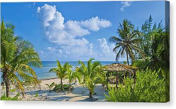 Island Beauty Canvas Print by Stephen Anderson