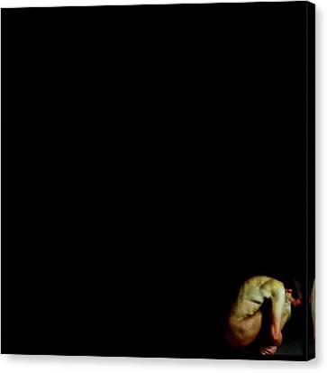 Isolation Canvas Print by Gun Legler