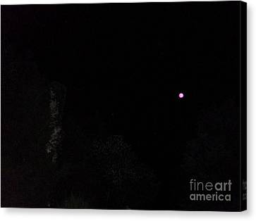 It Really Was Pink Canvas Print by Doug Kean