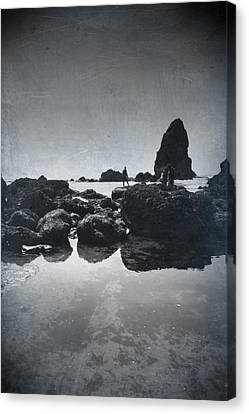 It Seems So Shallow And Low Canvas Print