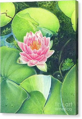 Its Pink Canvas Print by Elizabeth Dobbs