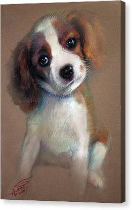 Jack Russell Terrier Dog Canvas Print by Ylli Haruni