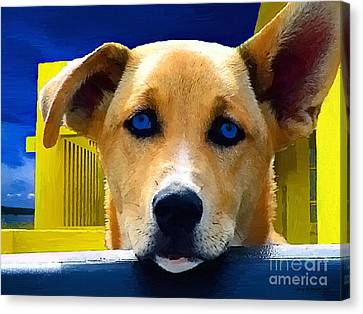 Jake Canvas Print by Jerry L Barrett