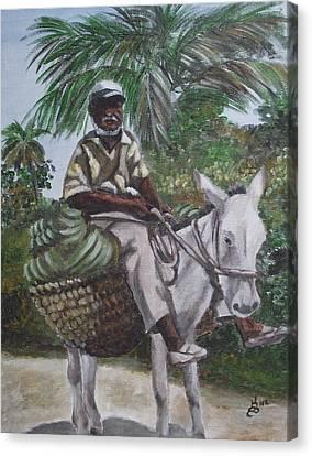 Jamaican Donkey Power Canvas Print by Kim Selig