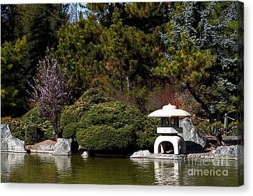 Japanese Friendship Garden . San Jose California . 7d12780 Canvas Print by Wingsdomain Art and Photography