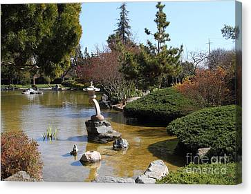 Japanese Friendship Garden . San Jose California . 7d12793 Canvas Print by Wingsdomain Art and Photography