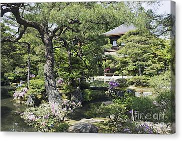 Japanese Garden And Pond Canvas Print