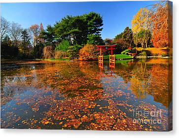 Japanese Garden Brooklyn Botanic Garden Canvas Print by Mark Gilman