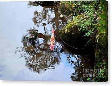 Japanese Koi Pond Canvas Print by Dean Harte